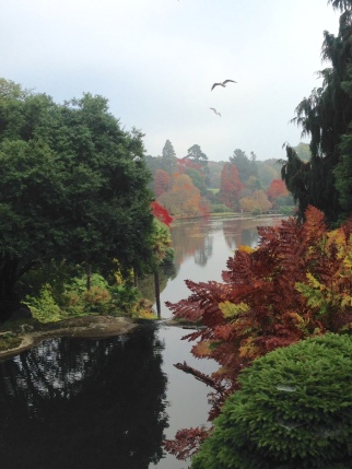 Sheffield Park pools